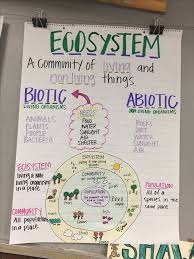 Science Related Chart Pin By Mary Amanda On School Fourth Grade Science Science