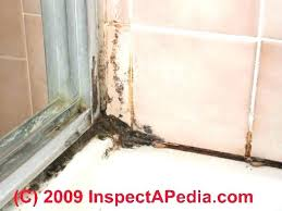 black mold on drywall health risks cleaning off bathroom walls how to remove and mildew from