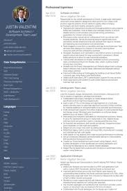 Software Architect Resume samples