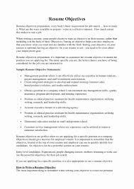Sample Resume Objectives Maintenance Maintenance Resume Objective Statement Inspirational Resume Sample 2