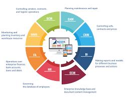 Erp Software Nerpa Enterprise Resource Planning