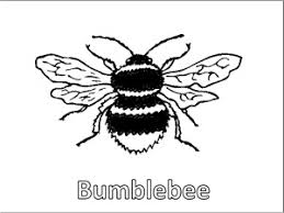 Small Picture Bee Coloring Pages Educational Activity sheets And Puzzles Free