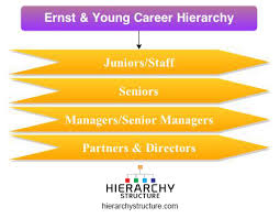 Accounting Career Progression Chart Ernst Young Career Hierarchy Chart Hierarchystructure Com