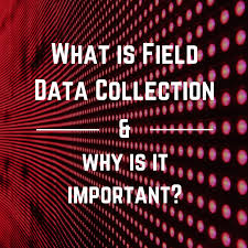 What Is Field Data Collection And Why Is It Important
