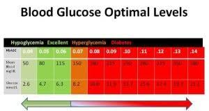 Dog Blood Sugar Chart How Blood Sugar Affects Your Body Diabetes Blood Sugar