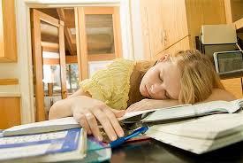 steps writing essay beginners