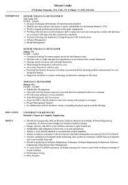 Teradata Developer Resume Samples Velvet Jobs