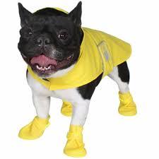 Jelly Wellies Dog Rain Gear Pet Sz Xs Coat Premium Waterproof Reflective Yellow