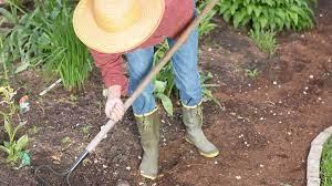 does a gardener need a dbs polo tweed