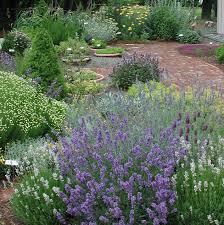 Herb Garden Starting A Herb Garden Sweet Valley Herbs