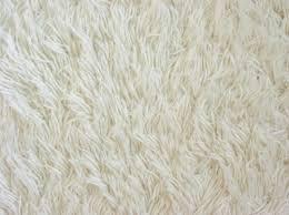 white carpet flooring. white carpet | texture flooring