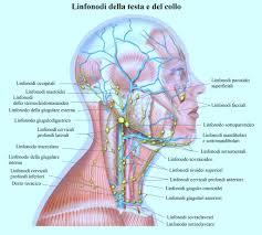 Simposio sul linfoma di Hodgkin a Montesilvano