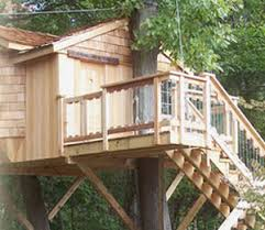 simple tree house plans.  Plans Our Complete Treehouse Design  Throughout Simple Tree House Plans A