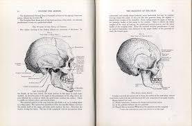Anatomy, Eugene Wolf,1962