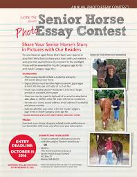 enter our annual senior horse photo essay contest nw horse source senior horse photo essay contest 2016