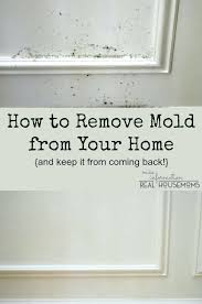 how to clean mold off wall best ideas about mold in bathroom on how to clean