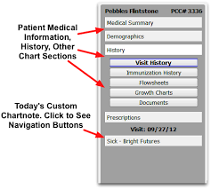Patient Chart Navigate A Patients Chart Pcc Learn