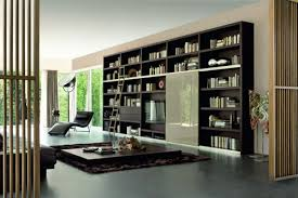 Bookcase Design Ideas Contemporary Bookcase With Doors Or Drawers Bookcase Design Ideas