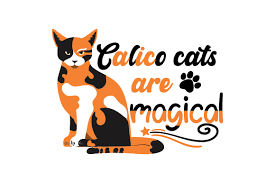 Make sure you keep checking the best christmas countdown regularly to see how many shopping days there are left until christmas. Calico Cats Are Magical Svg Cut File By Creative Fabrica Crafts Creative Fabrica