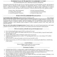 Resume Samples For Sales And Marketing Manager New Resume Templates ...