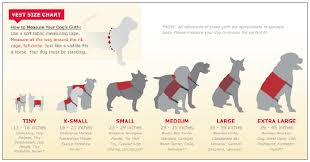 Dog Size Classification Chart Infographic For Dog Vests Sfb Personal Network