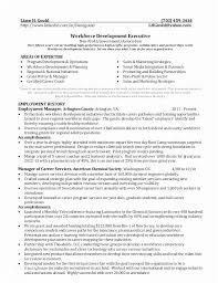 Grant Writing Resume