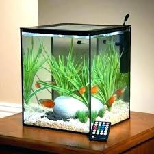 office fish. Aquarium Rental Hire A Fully Maintained Stocked Office Fish Tanks Desk Tank Best Old Ideas