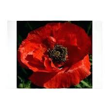 red poppy rug vibrant red poppy rug poppy red bath mat red poppy rug