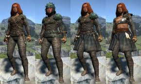 Little Known Light Armor Armor Clothing And Weapon Sets Dragons Dogma Wiki Fandom