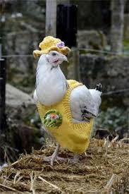 Chicken Sweater Pattern Gorgeous 48 Best Chicken Sweaters Images On Pinterest Chicken Sweater