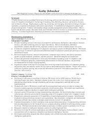 Resume It Consultant Resume