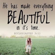 Beautiful Quotes From The Bible Best Of He Has Made Everything Beautiful In It's Time Bible Picture