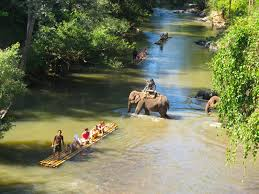 Image result for thailand adventure