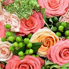 whole flowers by color blooms by