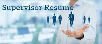 Sample Zoning Supervisor Resume Supervisor Resume Sample