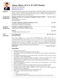 Nice Audit Internship Resume Ensign Documentation Template Example