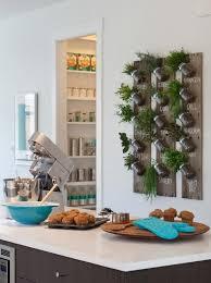 kitchen herb garden design 2