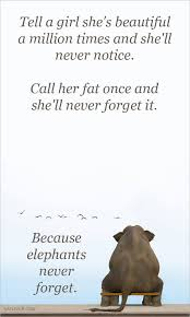Beautiful Fat Girl Quotes Best of Don't Tell A Girl She Is Fat Elephants Don't Forget Beautiful Girl