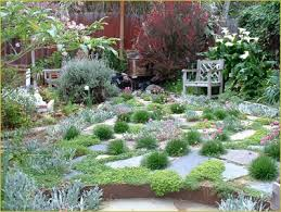 Small Picture 168 best No Mow images on Pinterest Backyard ideas Gardens and