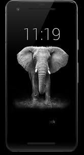 Elephant Lock Screen HD for Android ...