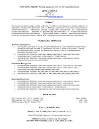Sample Summary Statement Resume Resume Statement Ex Job Resume Examples Resume Summary Statement