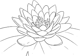 Flowers Coloring Pages For Preschoolers Flower Printable Coloring