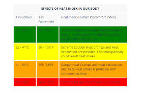 Heat Exhaustion Heat Stroke Chart