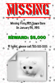 Lost Cat Flyer Missing Cat Flyer Template Postermywall