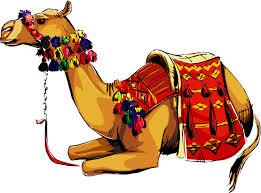 Image result for camel clip art