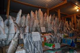 Леонид Каганов Якутия про рыбу Объясняю им что в Москве семги завались Продавцы страшно удивлены не может быть откуда в Москве семга это же наша рыба