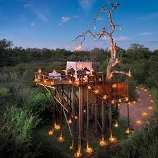 South Africa\u0027s Top 7 Safari Lodges With Treehouse Accommodation ...