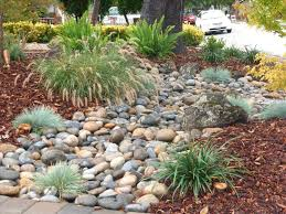 Gorgeous Low Maintenance Landscaping Ideas Small Front Yard