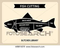 Meat Chart Fish Meat Cutting Vector Vintage Chart Cuts Guide Diagram