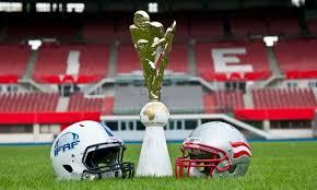Image result for Ifaf mens world championship trophy